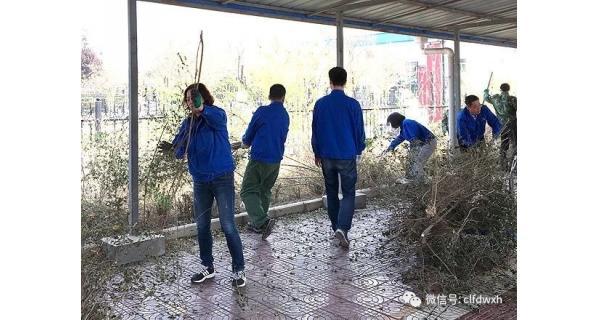 ▌长岭纺电新闻 ▌ 美化环境 净化心灵